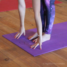 Formes de Yoga
